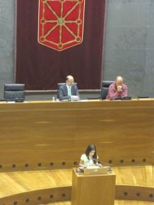 parlamento 316 [Resolucion de Escritorio]